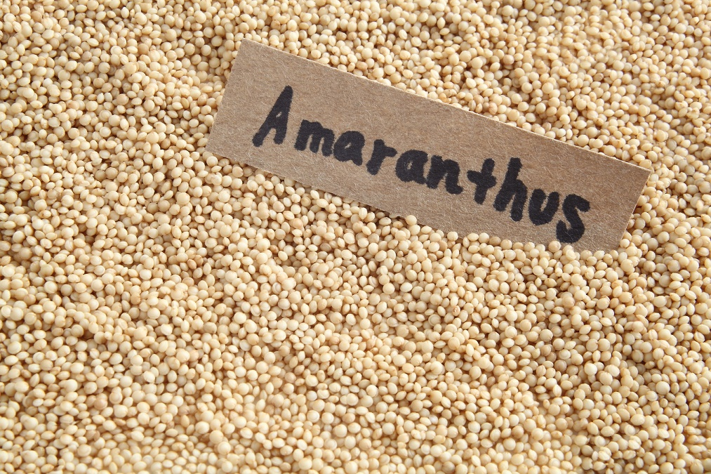 アマランサスが持つ8つの効果とダイエットへの取り入れ方